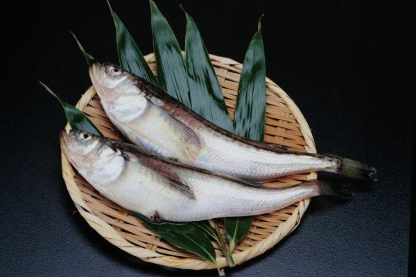 Hatahata, Akita's famous fish.