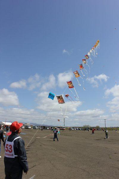 Kite Flying Tournament in Noshiro