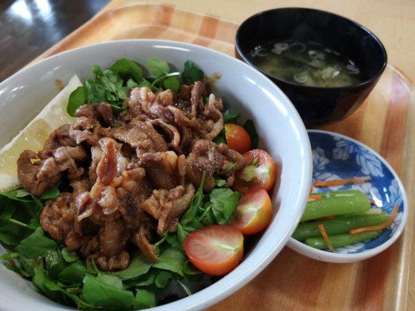 Lamb rice bowl at Mori no Eki in Fujisato Town.