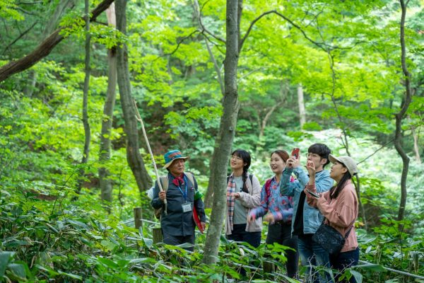 Learning about Tomeyama Forest in Happo.