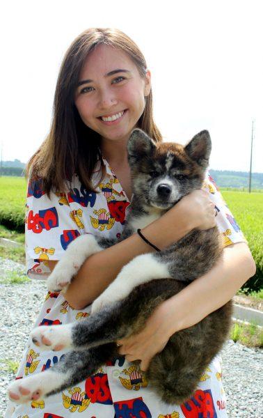 Playing with Akita dogs.