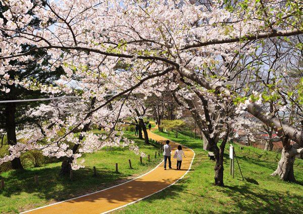Noshiro Park