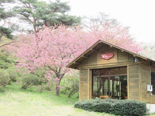 Cafe in Kimimachizaka Park.