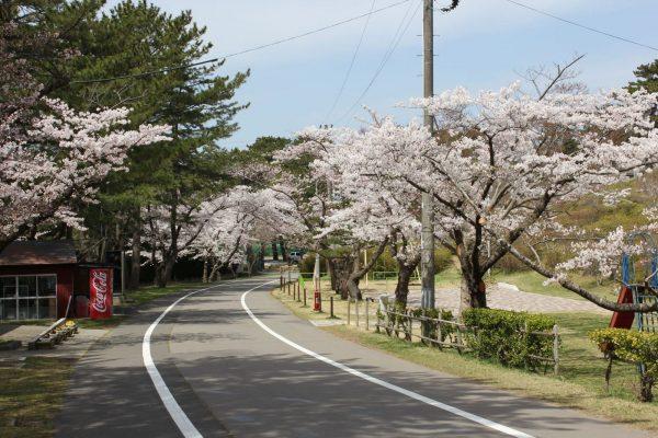 Noshiro Park.