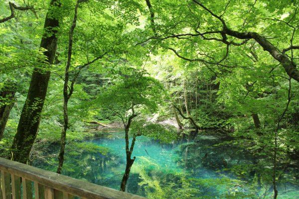 Wakitsubo Pond.