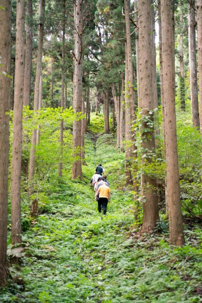 Trekking through the woods in Fujisato.