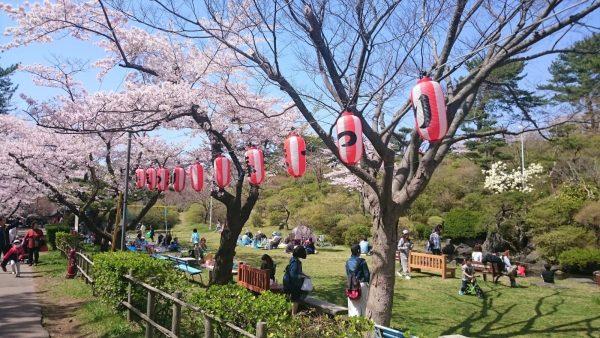 Spring festival in Noshiro